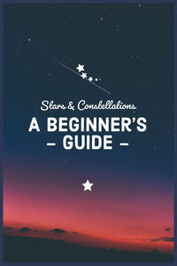 A beginner's   - guide - principali siti di social media