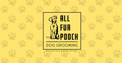 Dog Grooming Dog
