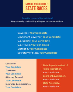 Colorful Vote Guide Social Post Election