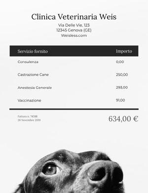 veterinarian clinic invoice  Fattura