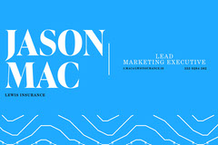 Blue Jason Mac Lewis Insurance Business Card Business