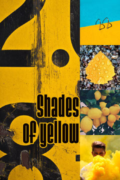 shades of yellow pinterest  Paint