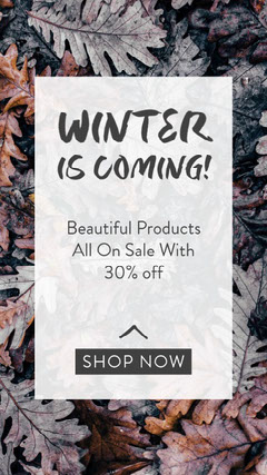 Grey and White Winter Is Coming Store Promotion Instagram Story  Winter