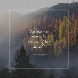 Trees Mist Autumn Quote Instagram Square