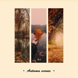 Yellow Autumn Scenes Instagram Square