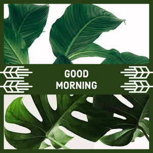 Green and White Sentence Instagram Graphic Good Morning Messages