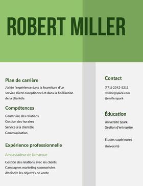 Robert Miller CV professionnel