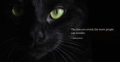 Black and White Mysterious Quote Twitter Banner Cat