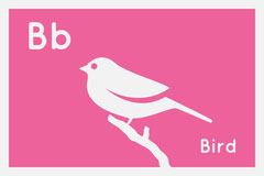 Flashcard animal bird Animal