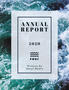 Blue Sea Wave Business Annual Report Wave