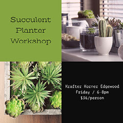 Green and Black Toned Succulent Planter Workshop Instagram Post Cactus