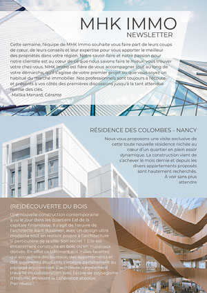 Light Blue And Brown Architecture Newsletter Newsletter