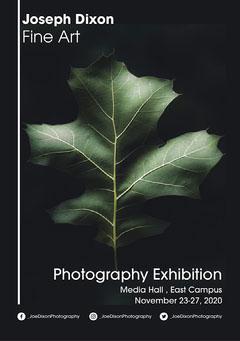 Green Leaf Joe DixonPhotography  Graduate Exhibition - Poster Art Exhibition