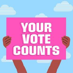 Pink & Blue Voting Banner Instagram Square Election