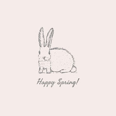 Happy Spring rabbit instagram square Spring