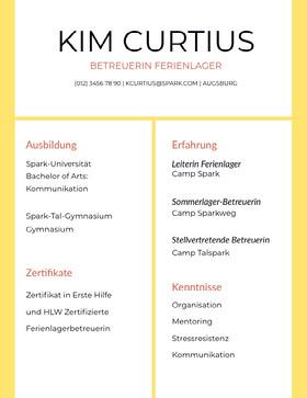 Kim Curtius Professioneller Lebenslauf