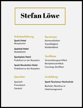 Stefan Löwe  Professioneller Lebenslauf