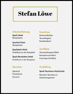 Stefan Löwe  Lebenslauf
