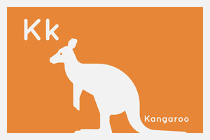 Orange and White Flashcard Animal Kangaroo Card Cartão educativo