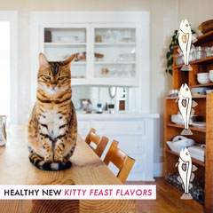 Healthy new Kitty Feast flavors Pets