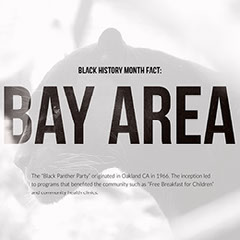 Black and White Bay Area Fact Instagram Post History