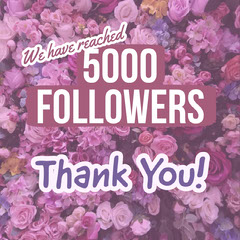 Thank You Followers Instagram Square Thank You Poster