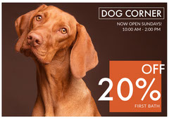 Dog Hotel Ad with Brown Dog Hotels