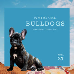 national bulldog are beautiful day instagram  Desert
