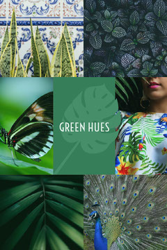 Green hues Pinterest color mood board  Green