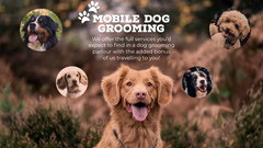 Brown Mobile Dog Grooming Facebook Cover Service