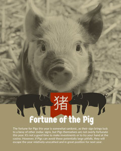 Grey and Red Monochrome Year Of The Pig Informations Instagram Portrait Casino