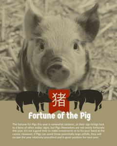 猪  Sign