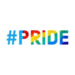 Colorful Minimalistic Pride Hashtag Instagram Graphic Love