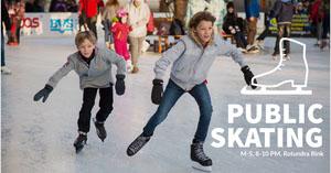 PUBLIC SKATING Banner de anuncios