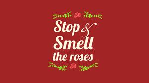 Red Roses Phrase Desktop Wallpaper Desktop Wallpaper