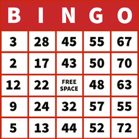 Red Bingo Card with Numbers Birthday