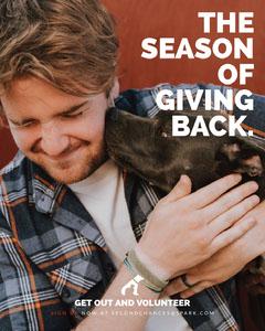 Warm Toned Shelter Volunteer Ad Instagram Portrait Volunteer