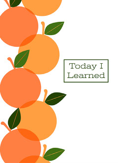 Minimal Citrus Notebook Cover Orange