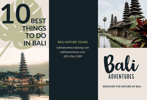 Bali Indonesia Travel Brochure with Pagodas Broschüre