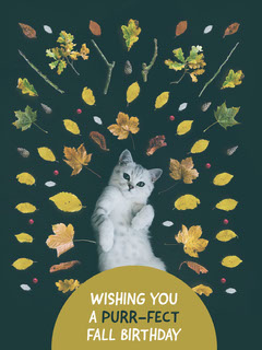 Green With Cat Wishing Card Fall