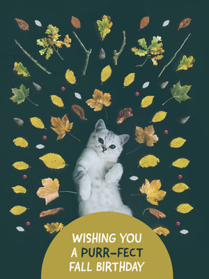 Green With Cat Wishing Card Happy Birthday Card Ideas