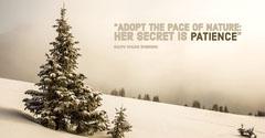 Winter Quote Instagram Landscape Landscape