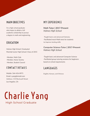 Red Math and Engineering Resume Resume  Examples