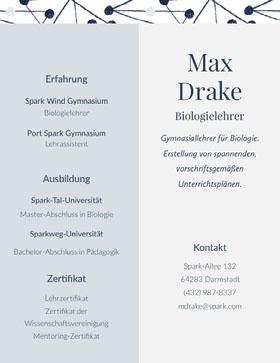 Max<BR>Drake Professioneller Lebenslauf