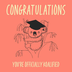 Pink Koala Drawing Congratulations Instagram Square Graduation Congratulation