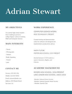 Turquoise Computer Science and Mathematics Resume Science