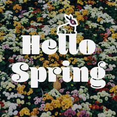 Hello Spring Instagram Square Spring