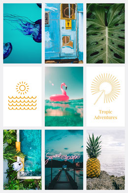 White and Colorful Tropic Adventures Collage Colagem de fotos