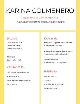 Karina Colmenero Currículum profesional
