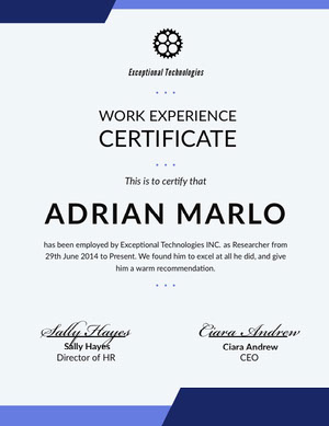 Blue Technology Job Recommendation Letter Work Experience Certificate